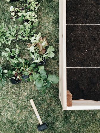 Roomed - Square Gardening