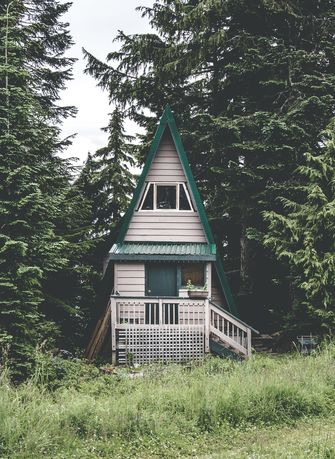 roomed-tiny-forest